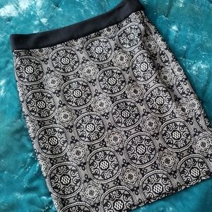 The Limited Lace Skirt